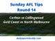 AFL Sunday Tips Round 14