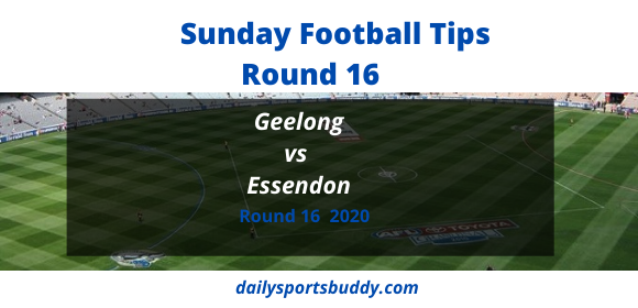 Geelong vs Essendon Round 16